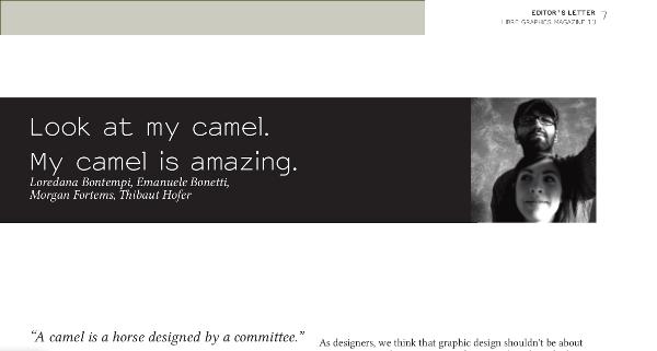 camelScreenshot